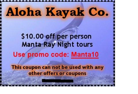 Kayak coupon code